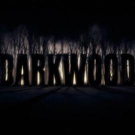 Darkwood beweist: Es braucht keine drei Dimensionen, damit einem das Herz in die Hose rutscht.